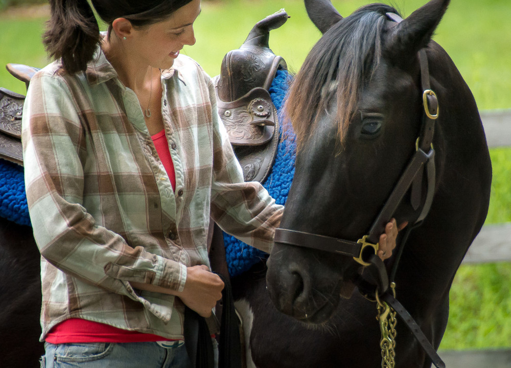 A hand of hope for rescued horses